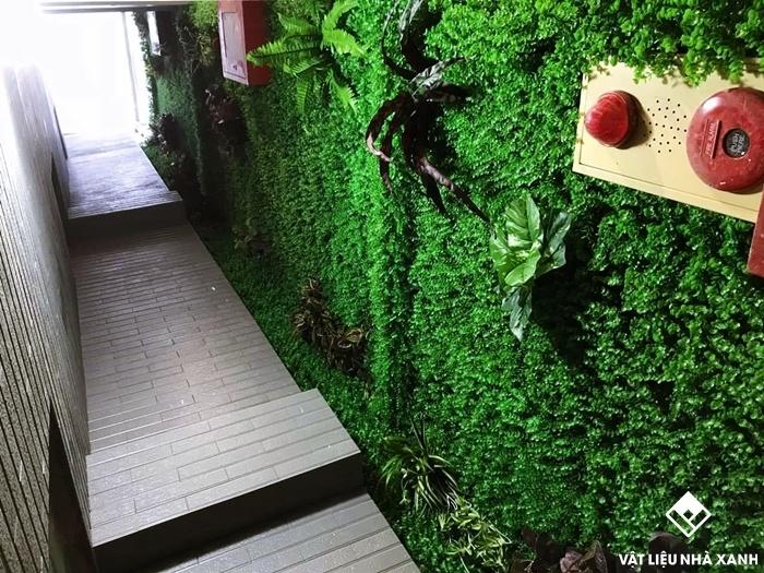 cỏ nhựa trang trí tường giá rẻ