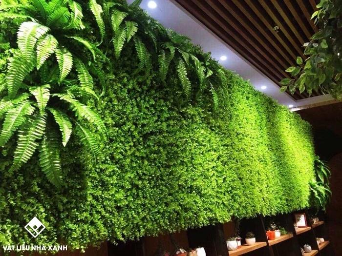 giá cỏ nhựa treo tường