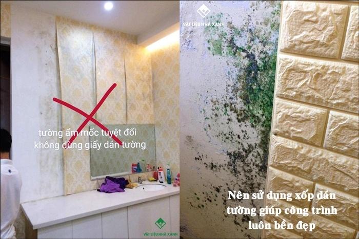 xốp dán tường chống ẩm mốc hcm