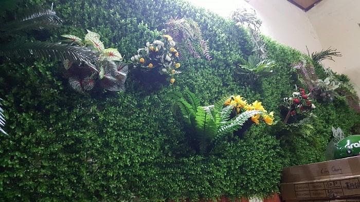 Các loại cỏ dán tường giá rẻ