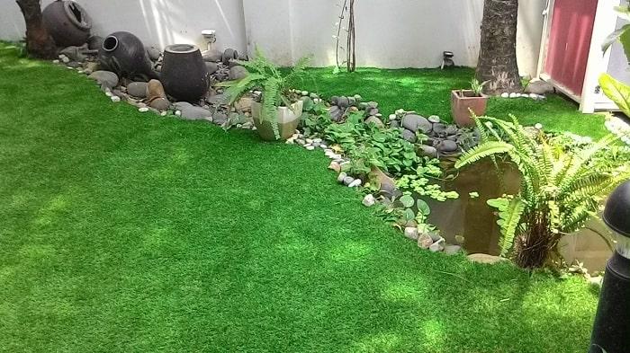cách phân loại cỏ nhựa