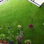 địa chỉ bán cỏ treo tường