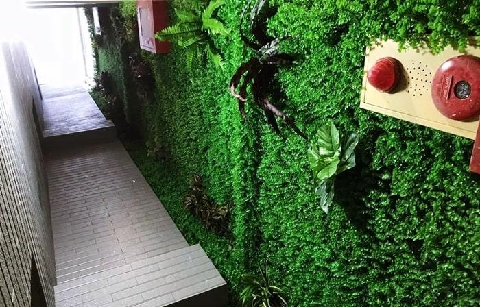 Mua cỏ giả treo tường giá rẻ