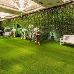 cỏ treo tường trang trí
