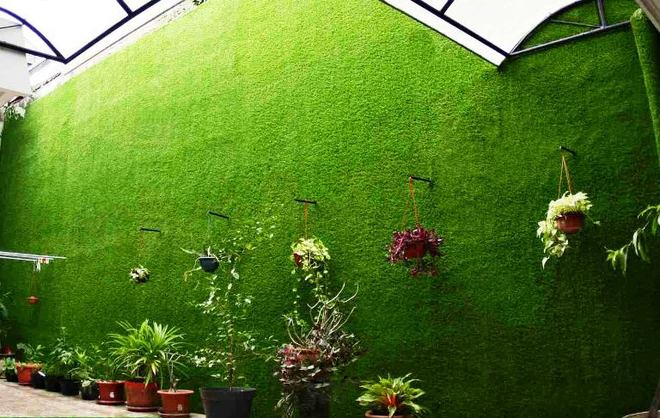 cỏ nhựa treo tường giá rẻ tphcm