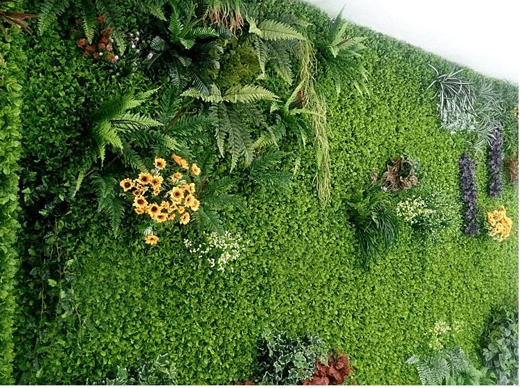 mẫu cỏ nhựa trang trí tường