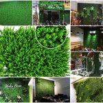 bán cỏ trang tri