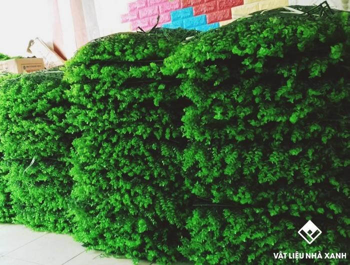bán tường cỏ giá rẻ