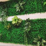cỏ nhựa trang trí chung cư