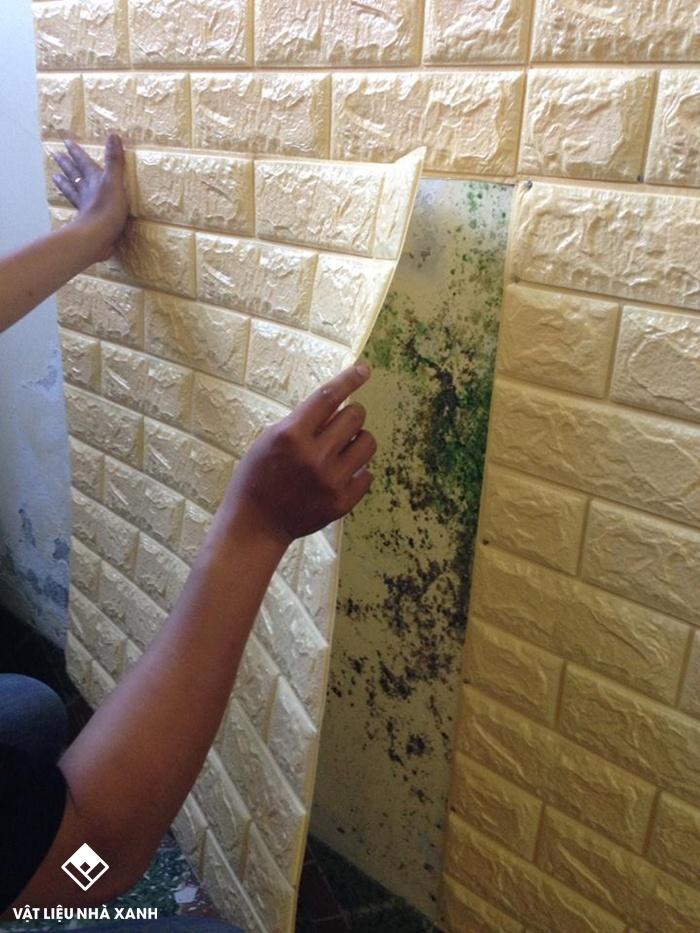 xốp dán tường chống thấm tphcm