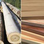 So sánh gỗ tự nhiên và nhựa giả gỗ: Vật liệu nào tối ưu hơn?